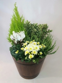 Seasonal Outdoor Doorstep Planter