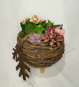 Wicker Pink Pumpkin Planter